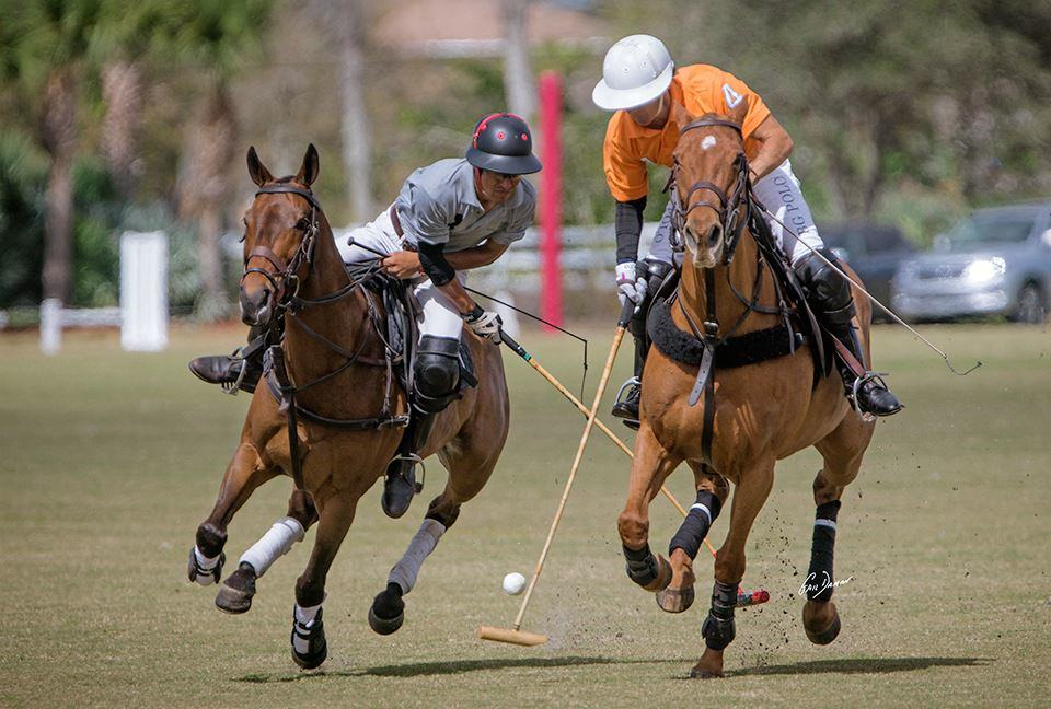 bg vero beach polo, verobeach polo